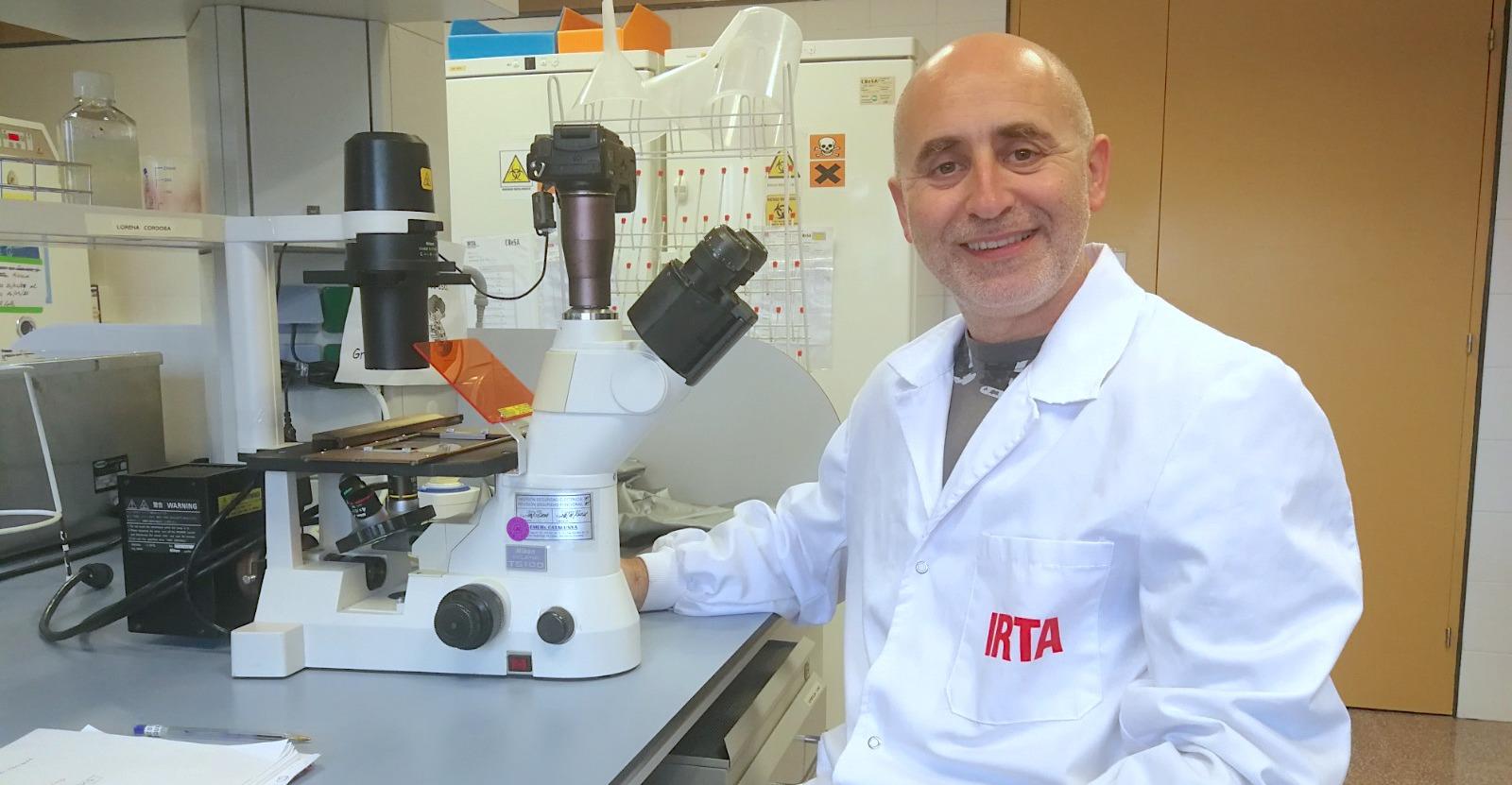 Quim Segalés, investigador de IRTA-CReSA